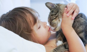 plantao-pediatrico-bebe-com-gato