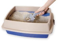 caixa-areia-gatos-felinos