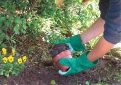 Jardinagem com Luvas